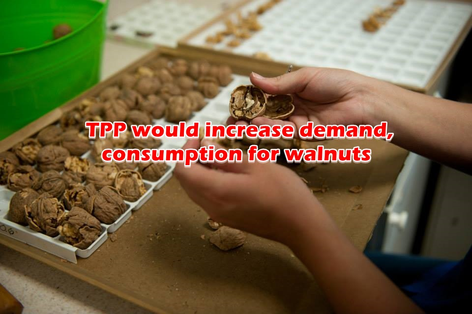 TPP would increase demand, consumption for walnuts