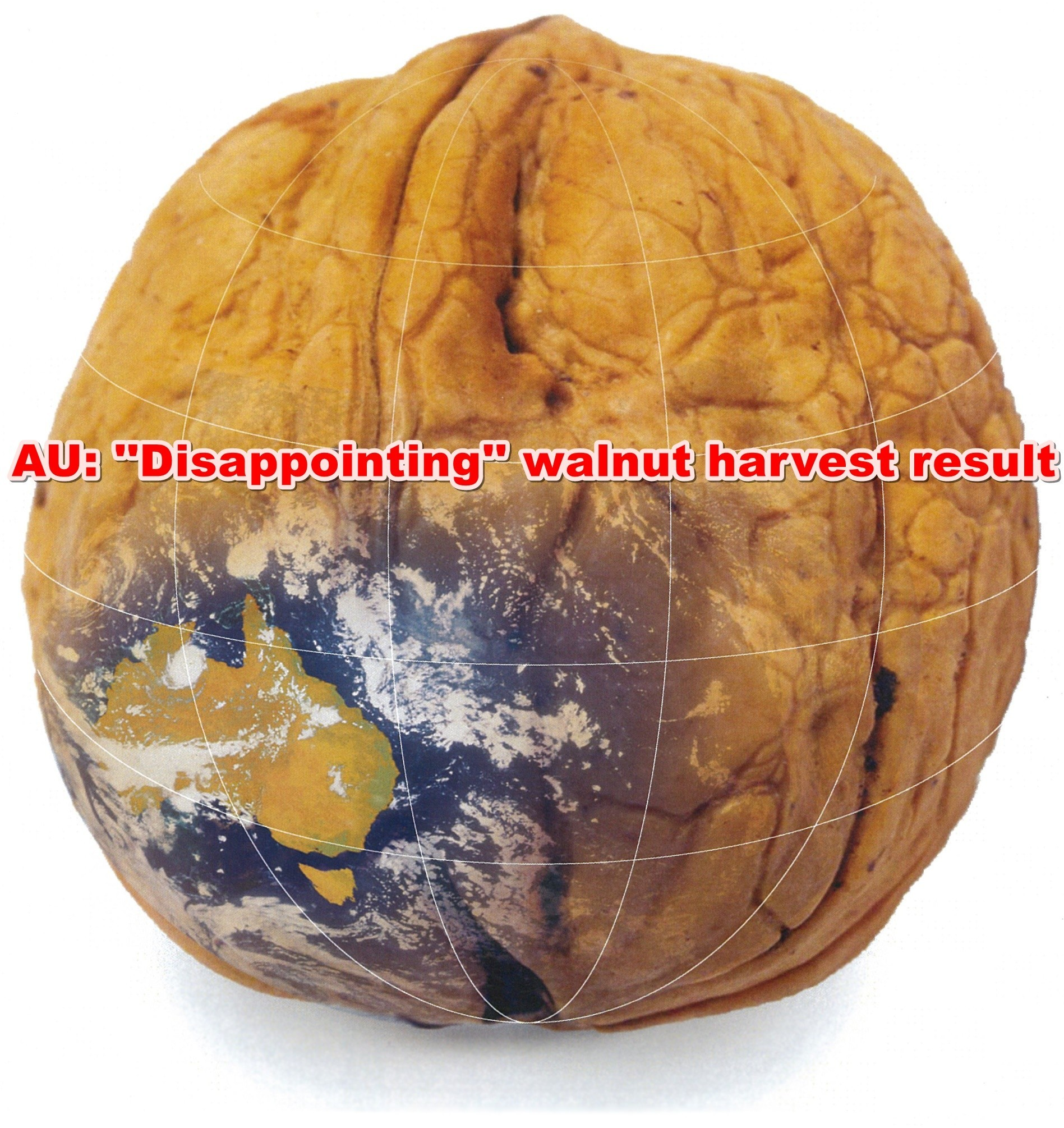 AU: 'Disappointing' walnut harvest result