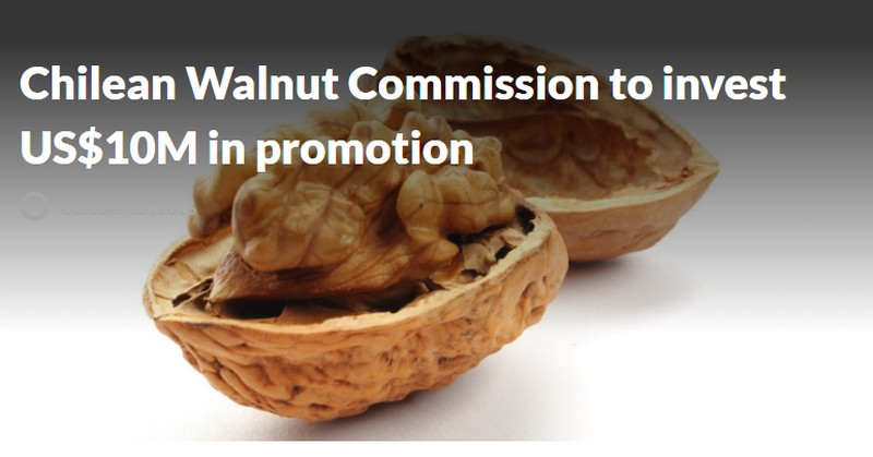 Chilean Walnut Commission to invest US$10M in promotion