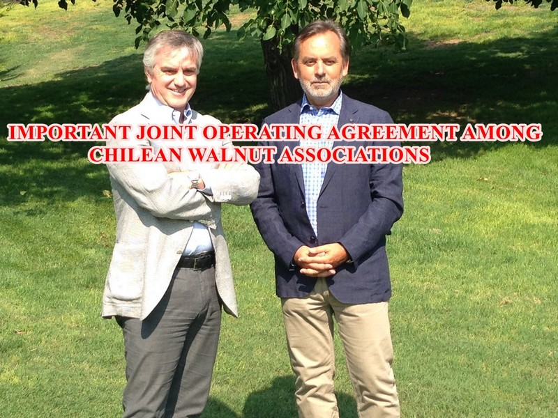IMPORTANT JOINT OPERATING AGREEMENT AMONG CHILEAN WALNUT ASSOCIATIONS