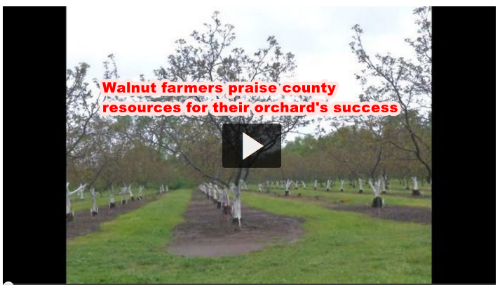 Walnut farmers praise county resources for their orchard's success