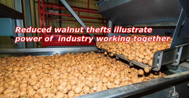 Reduced walnut thefts illustrate power of industry working together