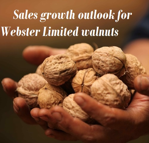 Sales growth outlook for Webster Limited walnuts