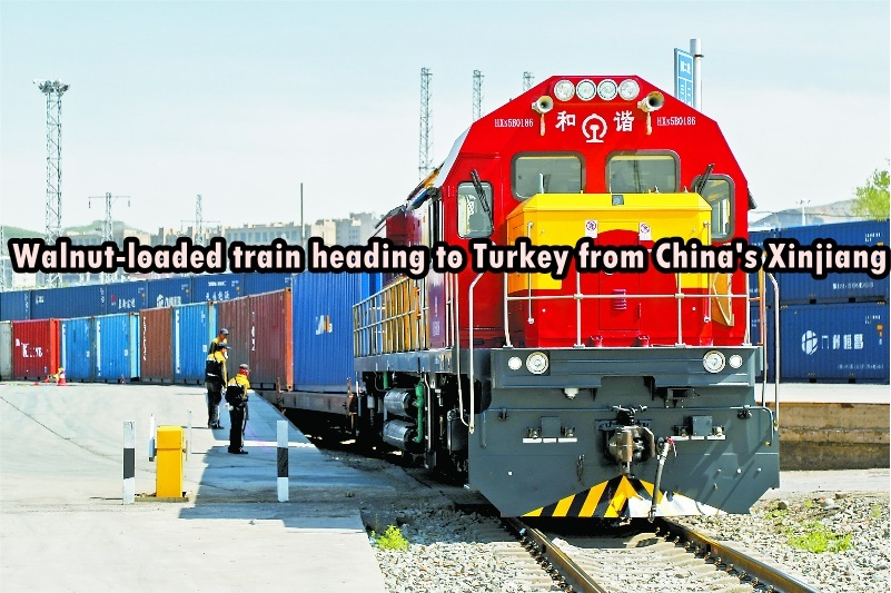 Walnut-loaded train heading to Turkey from China's Xinjiang